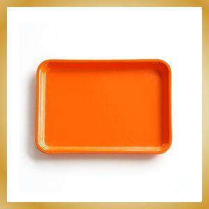 Camtray Sサイズ オレンジ トレー|vanilladesign