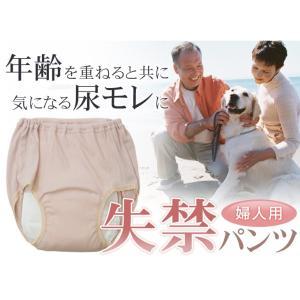 女性用失禁パンツ2枚セット(ショーツ) 日本製 (Wディスメルで強力消臭)(32029)