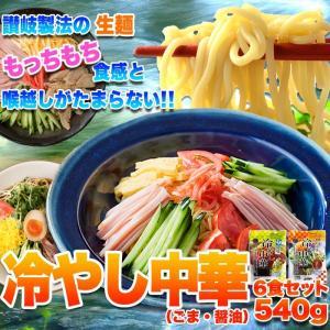 ポイント消化 期間限定 特別セット 冷やし中華 2種6食セット(醤油・ごま)  送料無料 セール vape-land