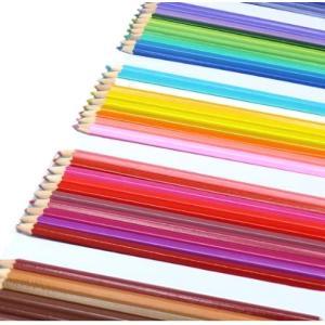 塗り絵や、スケッチに! きれいな色味が勢揃い。50本色えんぴつ サイズ 約 ケース47.5×18×1cm 色鉛筆17.5cm __ vaps