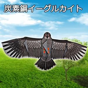 凧 炭素鋼 凧 凧揚げ タコ イーグルカイト ガンガン上昇 楽しいカイト カイト カイト 外遊び アウトドア レジャー|vastmart
