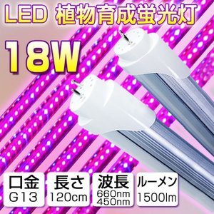 LED植物育成 植物育成ライト 18w形 直管 5個 セット 全光束1200lm 120cm G13 t8 グロー式工事不要  水耕栽培 植物育成パネル 水耕栽培ランプ 植物育成 室内用|vastmart