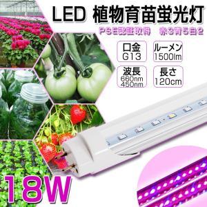 LED植物育苗 18w形 直管 全光束1200lm 120cm G13 t8 グロー式工事不要 植物育成ライト 水耕栽培植物育成パネル|vastmart