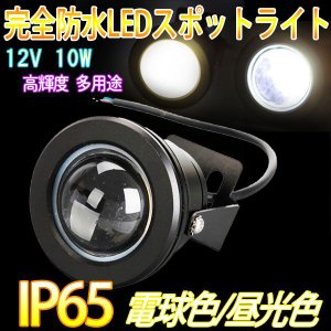 丸型投光器 LEDスポットライト 完全防水 電球色 昼光色 IP65 10W DC 12V 800-900LM 高輝度 多用途 角度調節可能 一個 直流 照明 人気|vastmart