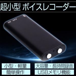 4GB 超小型 ボイスレコーダー ICボイスレコーダー USBメモリ機能 長時間 高音質 ICレコーダー 小型 多機能 録音機 コンパクト 軽量 大容量 簡単操作|vastmart