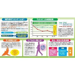新素材サプリメント 遊歩2(UC-II配合)|vbn|02