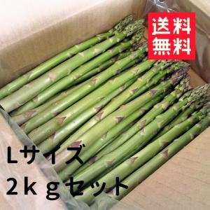 送料無料 朝採り 低農薬 乳牛の堆肥で育てた甘〜いアスパラガス(L) 2kgセット (生産者:武甲農場)