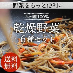 【送料無料】乾燥野菜ミックス 6種1パックづつのおためしセット 超時短食材