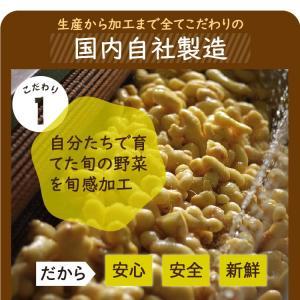 乾燥野菜 ミックス 6種1パックづつのおためしセット 超時短食材 送料無料|vegeko|13
