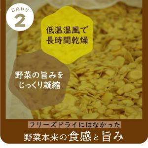 乾燥野菜 ミックス 6種1パックづつのおためしセット 超時短食材 送料無料|vegeko|14