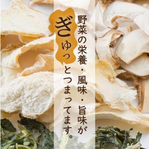 乾燥野菜 ミックス 6種1パックづつのおためしセット 超時短食材 送料無料|vegeko|15