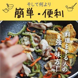 乾燥野菜 ミックス 6種1パックづつのおためしセット 超時短食材 送料無料|vegeko|16
