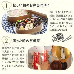 乾燥野菜 ミックス 6種1パックづつのおためしセット 超時短食材 送料無料|vegeko|17