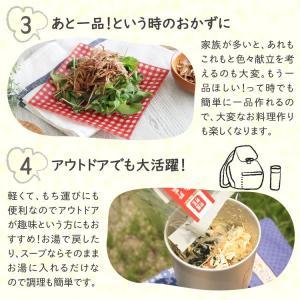 乾燥野菜 ミックス 6種1パックづつのおためしセット 超時短食材 送料無料|vegeko|18