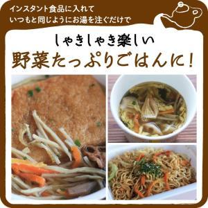 乾燥野菜 ミックス 6種1パックづつのおためしセット 超時短食材 送料無料|vegeko|19