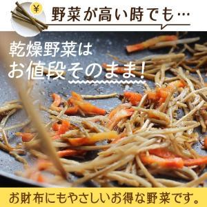 乾燥野菜 ミックス 6種1パックづつのおためしセット 超時短食材 送料無料|vegeko|20
