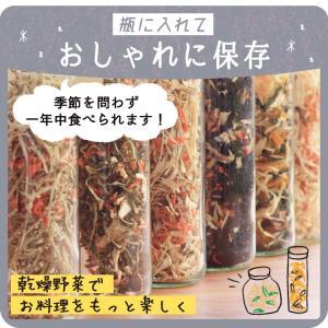乾燥野菜 ミックス 6種1パックづつのおためしセット 超時短食材 送料無料|vegeko|21