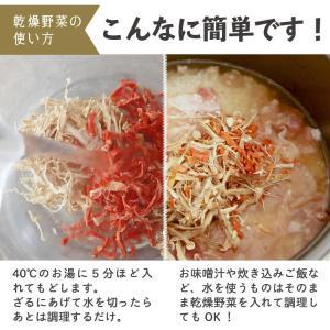 乾燥野菜 ミックス 6種1パックづつのおためしセット 超時短食材 送料無料|vegeko|07