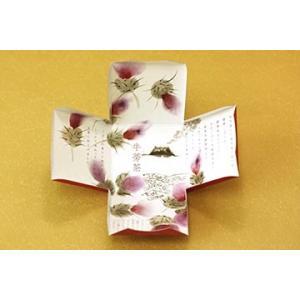 ごぼう茶 みごちゃ ギフト用特別パッケージセット 鹿児島県産 ごぼう使用 ティーパック1.5g×30包(10包×3袋) 約1ヶ月分 ゴボウ茶 牛蒡茶 送料無料|vegeko|07
