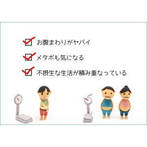 えのき えのき茸茶 鹿児島県産 エノキ茸 使用 ティーパック 1g×20袋 国産 送料無料|vegeko|02