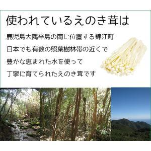 えのき えのき茸茶 鹿児島県産 エノキ茸 使用 ティーパック 1g×20袋 国産 送料無料|vegeko|11