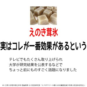 えのき えのき茸茶 鹿児島県産 エノキ茸 使用 ティーパック 1g×20袋 国産 送料無料|vegeko|03