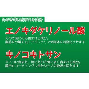 えのき えのき茸茶 鹿児島県産 エノキ茸 使用 ティーパック 1g×20袋 国産 送料無料|vegeko|04