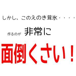 えのき えのき茸茶 鹿児島県産 エノキ茸 使用 ティーパック 1g×20袋 国産 送料無料|vegeko|06