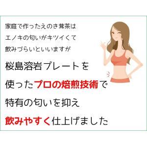 えのき えのき茸茶 鹿児島県産 エノキ茸 使用 ティーパック 1g×20袋 国産 送料無料|vegeko|10
