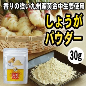 生姜 しょうが 生姜パウダー 鹿児島県産生姜使用 野菜パウダー 30g|vegeko