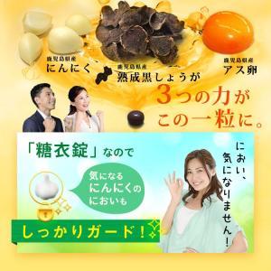 にんにく卵黄 熟成黒しょうがinにんにく卵黄 62粒 約1か月分 vegeko 11