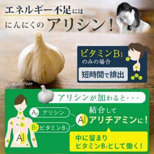にんにく卵黄 熟成黒しょうがinにんにく卵黄 62粒 約1か月分 vegeko 04