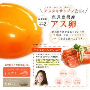 にんにく卵黄 熟成黒しょうがinにんにく卵黄 62粒 約1か月分 vegeko 08
