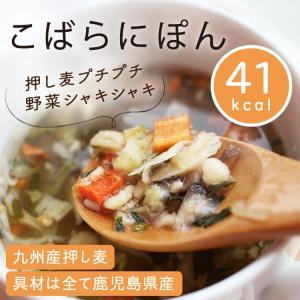 名称:こばらにぽん 内容量:11.6g×1個 原材料:デキストリン、玉ねぎ、チキンエキス、野菜だし、...