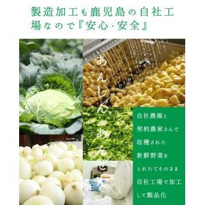 だし 出汁 お野菜だし 野菜だし 70g(7g×10袋) 送料無料|vegeko|12