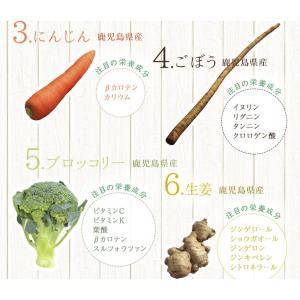 だし 出汁 お野菜だし 野菜だし 70g(7g×10袋) 送料無料|vegeko|07