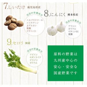 だし 出汁 お野菜だし 野菜だし 70g(7g×10袋) 送料無料|vegeko|08