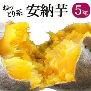 さつまいも 安納芋(鹿児島県産)5kg 甘い 美味しい ほぼ...