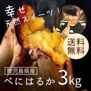 鹿児島県産 べにはるか3kg 【送料無料】さつまいも