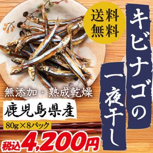 干物 鹿児島県産 キビナゴの一夜干し 80g×8パック 無添加 熟成乾燥 送料無料|vegeko