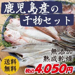 干物 鹿児島県産 無添加・熟成乾燥 魚屋厳選 鹿児島の干物セット|vegeko