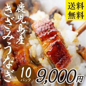 永峯うなぎ 鹿児島県産きざみうなぎ 約55g×10パック|vegeko
