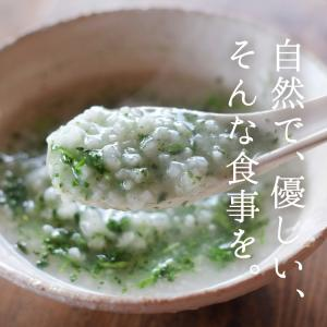 イブシギンのしぜんだし for MAMA (離乳食) 粉末タイプ 100g vegeko 02