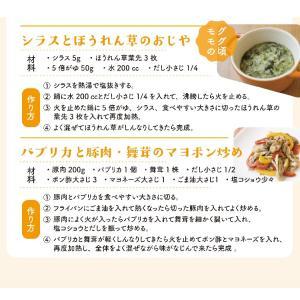 イブシギンのしぜんだし for MAMA (離乳食) 粉末タイプ 100g vegeko 12