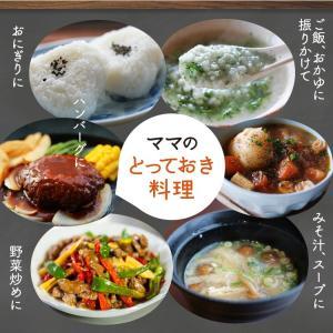 イブシギンのしぜんだし for MAMA (離乳食) 粉末タイプ 100g vegeko 13