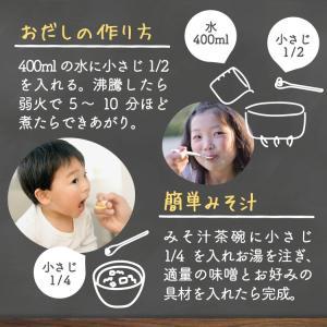 イブシギンのしぜんだし for MAMA (離乳食) 粉末タイプ 100g vegeko 14