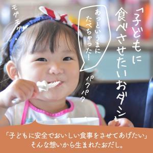 イブシギンのしぜんだし for MAMA (離乳食) 粉末タイプ 100g vegeko 06