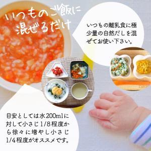 イブシギンのしぜんだし for MAMA (離乳食) 粉末タイプ 100g vegeko 10