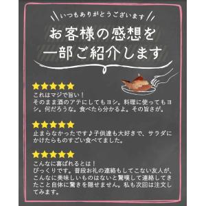 そのまま食べるかつおスライス  大容量60g×10パックセット  本場 鹿児島枕崎産|vegeko|19