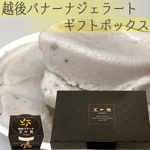 越後バナーナジェラート ギフトボックス 6個入 皮ごと食べられる 最高級バナナ 新潟県産 アイスクリーム|vegetable-fruit-igh